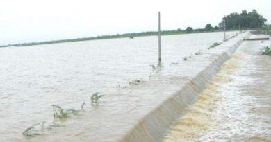 یوپی میں لگاتار بارش سے 16 اضلاع میں سیلاب کا خطرہ، کئی ندیاں خطرے کے نشان سے اوپر